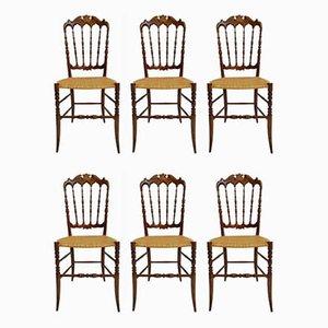 Esszimmerstühle von Chiavari Campanino für Chiavari Campanino, 1950er, 6er Set