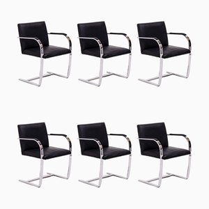 Brno Dining Chairs by Ludwig Mies van der Rohe for Knoll Inc. / Knoll International, 2000s, Set of 6
