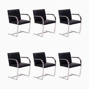 Sedie da pranzo Brno di Ludwig Mies van der Rohe per Knoll Inc. / Knoll International, inizio XXI secolo, set di 6