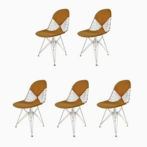 DKR Bikini Chairs by Charles & Ray Eames, 1950s, Set of 5
