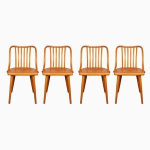 Chaises de Salle à Manger par Antonín Šuman pour TON, 1960s, Set de 4