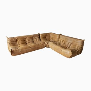 Camel Leather Modular Sofa by Michel Ducaroy for Ligne Roset, 1990s, Set of 3