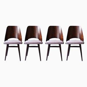 Mid-Century Esszimmerstühle von Radomir Hofman für TON, 4er Set