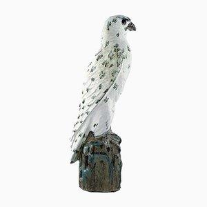 Scultura Falcon in terracotta di Gudmundur Mar Einarsson, Islanda, anni '40