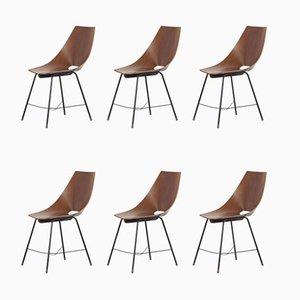 Chaises de Salle à Manger Vintage en Bois Courbé de Societa Compensato Curvato, 1960s, Set de 6
