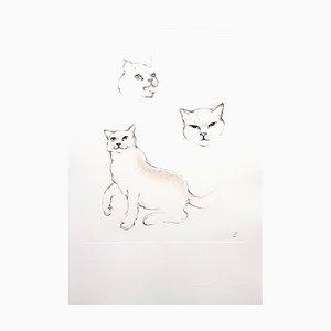 Cats Radierung von Leonor Fini, 1985