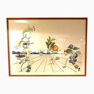 Litografía Flordali I de Salvador Dali, 1981