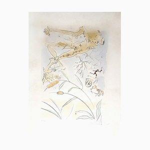 Incisione The Oak and the Reed di Salvador Dali, 1974