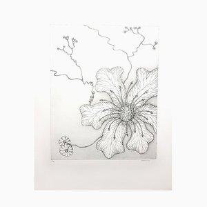 Herbarium Lithografie von Gochka Charewicz