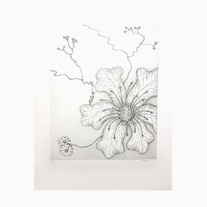 Herbarium Lithograph by Gochka Charewicz