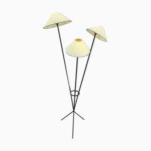 Lámpara de pie, años 50