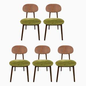 Italienische Mid-Century Esszimmerstühle, 1950er, 5er Set