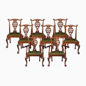 Sedie da pranzo Chippendale antiche in mogano, set di 8