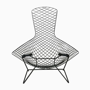 Lounge Chair by Harry Bertoia for Knoll Inc. / Knoll International, 1970s
