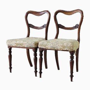 Antike Esszimmerstühle mit Gestell aus Palisander, 2er Set