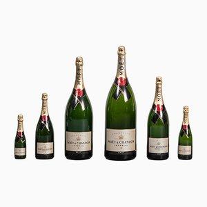Champagnerflaschen von Moët & Chandon, 1980er, 6er Set