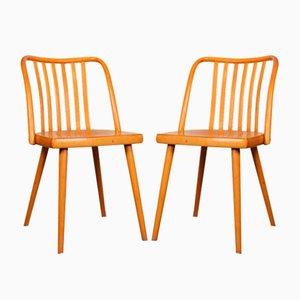 Esszimmerstühle von Antonín Šuman für TON, 1960er, 2er Set