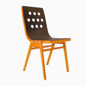 Rathausstühle von Roland Rainer für A. & E. Pollak, Wien, 1950er