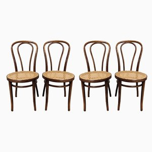 Dining Chairs by Zpm Radomsko, 1950s, Set of 4