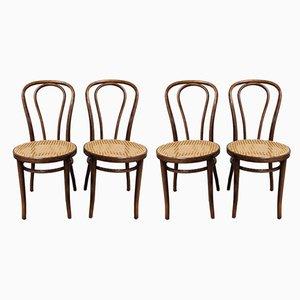 Esszimmerstühle von Zpm Radomsko, 1950er, 4er Set