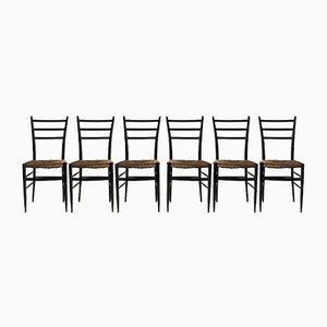 Esszimmerstühle von Chiavari, 1950er, 6er Set