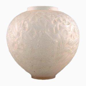 Vase Gui Transparent en Verre Givré par René Lalique, années 20