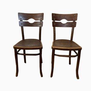 Antike Esszimmerstühle aus Bugholz von Mundus, 2er Set