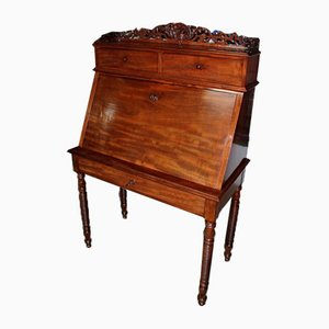 19th Century Mahogany Veneer and Rosewood Secretaire