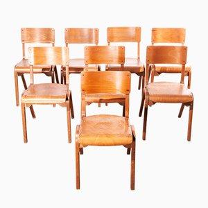 Vintage Esszimmerstühle aus Buche, 1950er, 8er Set