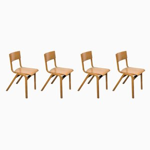 Vintage Beech Dining Chairs from Tecta, 1950s, Set of 4