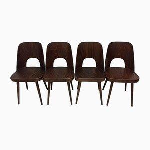 Sedie da pranzo vintage di Oswald Haerdtl, anni '50, set di 4