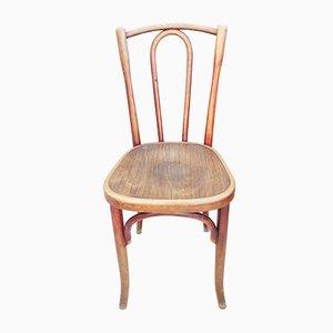 Französische Esszimmerstühle aus Bugholz von Fischel, 1919, 25er Set