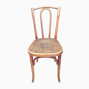French Bentwood Dining Chairs by Fischel, 1919, Set of 25