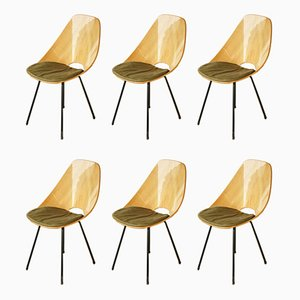 Italian Medea Dining Chairs by Vittorio Nobili for Fratelli Tagliabue, 1950s, Set of 6