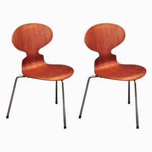 Chaises de Salle à Manger Modèle Ant en Teck par Arne Jacobsen pour Fritz Hansen, 1960s, Set de 2