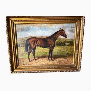 Antikes Ölgemälde eines Pferdes von August Von Blaas