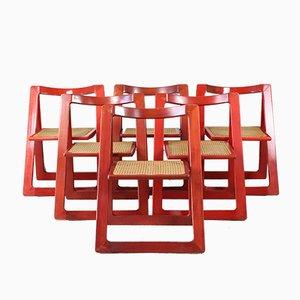 Chaises de Salon Trieste par D'Aniello Jacober pour Bazzani, années 60, Set de 6