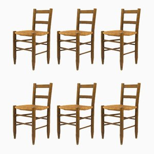 Beech and Straw Dining Chairs, 1950s, Set of 6