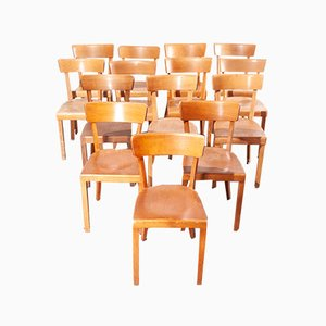 Beech Bentwood Bistro Chairs, 1950s, Set of 20