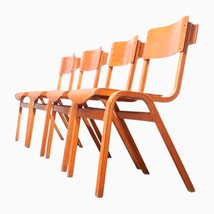 Stackable Dining Chairs from Lamstak, 1950s, Set of 4