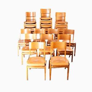 Stapelbare Esszimmerstühle von Lamstak, 1950er, 24er Set
