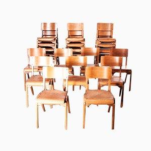 Stapelbare Esszimmerstühle aus Buche von James Leonard für ESA, 1950er, 24er Set