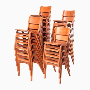 Beech Dining Chairs from Tecta, 1950s, Set of 24