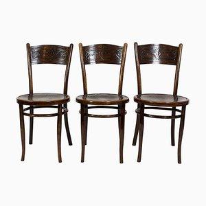 Antike Esszimmerstühle von Jacob & Josef Kohn, 3er Set