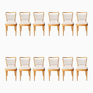 Dining Grey Oak Chairs from Dal Vera Conegliano, 1950s, Set of 12