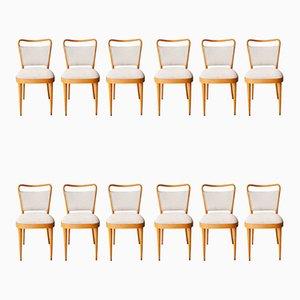 Esszimmerstühle mit Gestell aus Eiche & grauem Bezug von Dal Vera Conegliano, 1950er, 12er Set