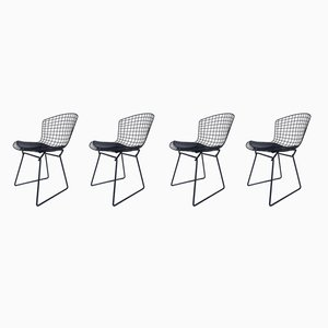 Chaises d'Appoint Noires par Harry Bertoia pour Knoll Inc. / Knoll International, années 60, Set de 4
