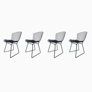 Schwarze Beistellstühle von Harry Bertoia für Knoll Inc. / Knoll International, 1960er, 4er Set