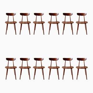 Esszimmerstühle aus Holz von Hiller, 1950er, 12er Set