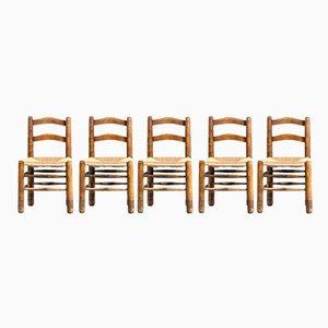 Chaises de Salon Vintage en Chêne et Paille, années 50, Set de 5